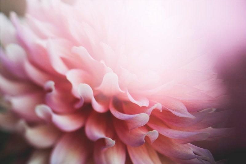 【ピンク色】お金に関する人間関係が向上