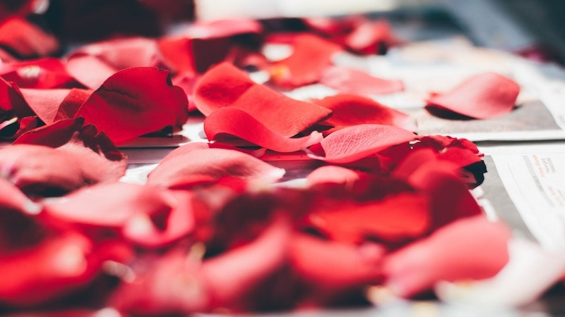 【赤色(レッド)】積極的にお金を稼ぎたい人に最適