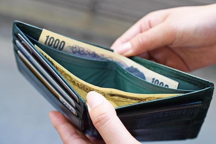 ハレルヤのウナギ革財布の内装